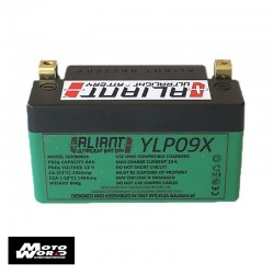Aliant 322000024 Lithium YLP09X 12V 8AH Motorcycle Battery